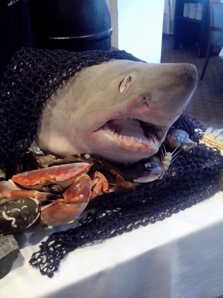 Opulentes Fisch-Buffet inklusive echtem Haikopf gleich am ersten Abend